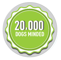 20000 dogs minded