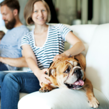 Woman in Blue and white striped shirt sitting on a couch, holding�Bulldog
